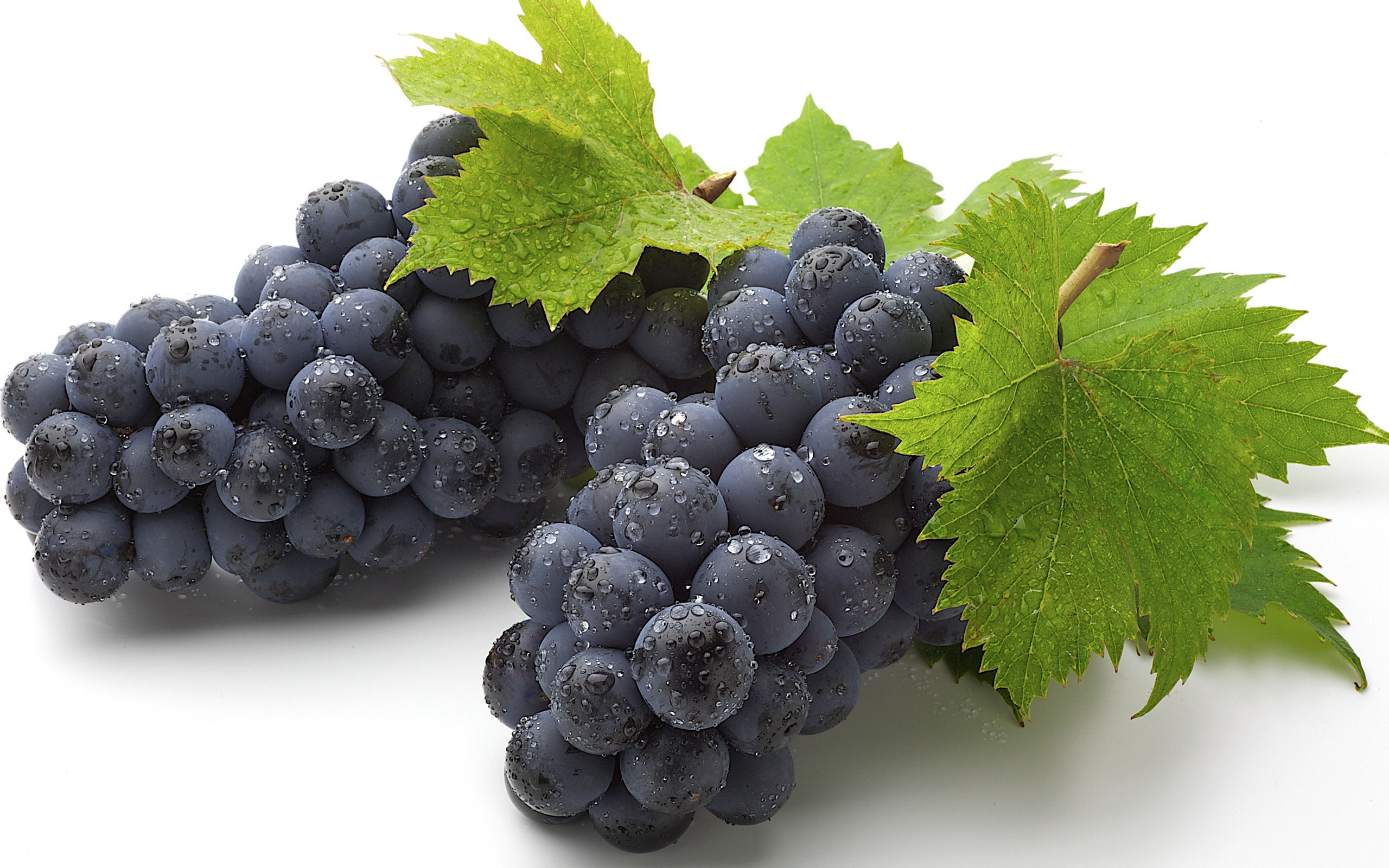 blue-grapes-beautiful-wallpapers
