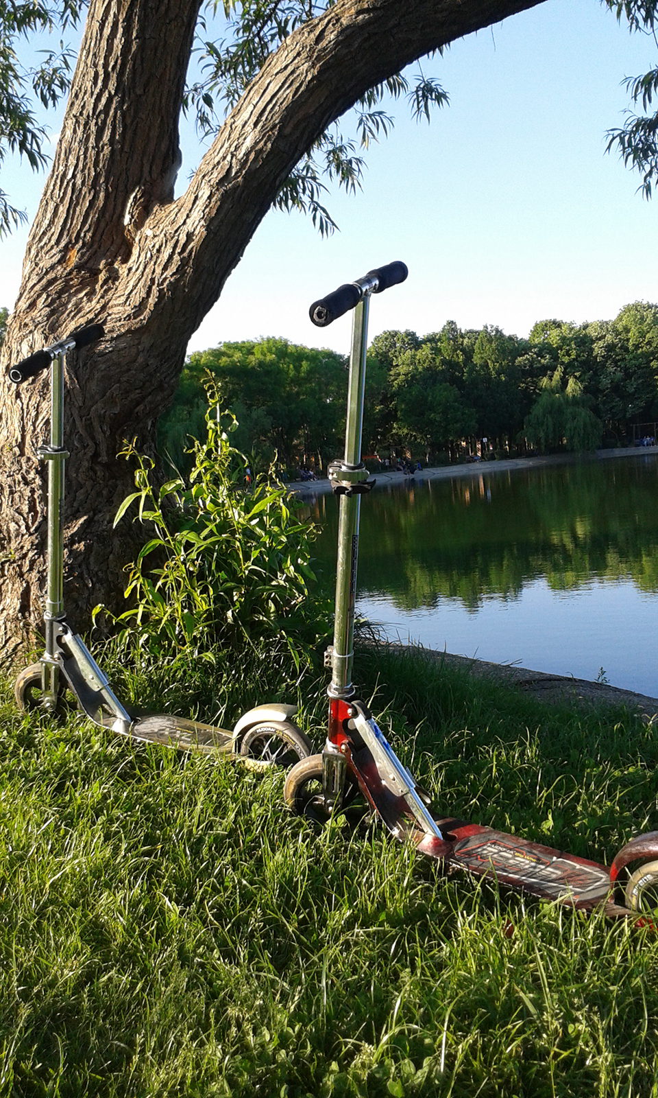 Scooter in park